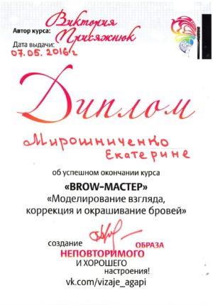 miroshnichenko-diplom-01