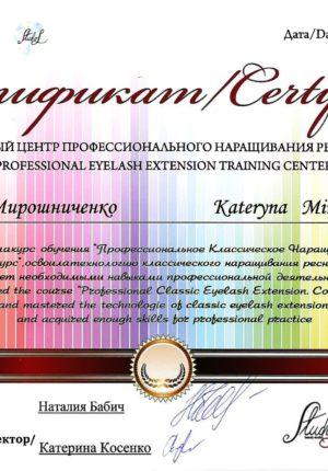 miroshnichenko-diplom-04